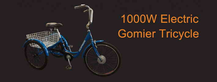 1000W Electric Gomier Tricycle