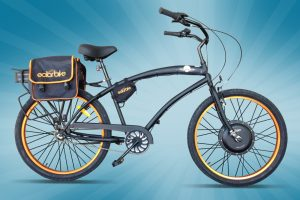 Electric 1000 watt Beach Cruiser